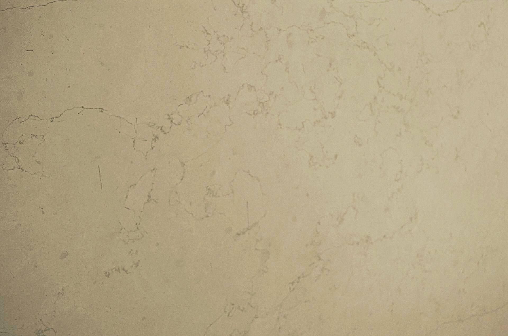 Bianco Perlino фото 1 — камень от Bevers Marmyr