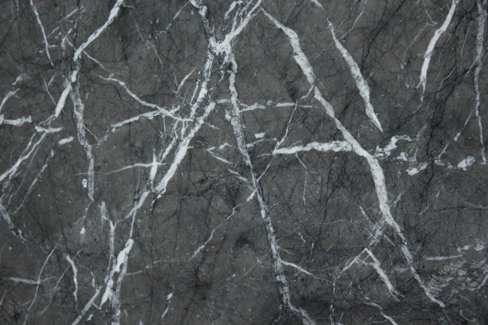 Grigio Carnico фото 1 — камень от Bevers Marmyr